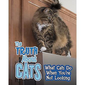 الحيوانات الأليفة السرية! حزمة A 4 من ماري كولسون-كتاب 9781474738613