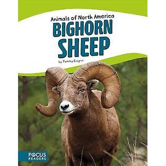 Bighorn Sheep by Tammy Gagne - 9781635170887 Book