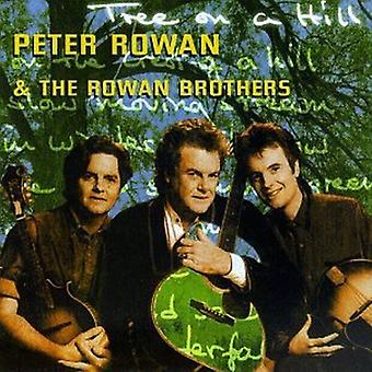 Peter Rowan & Rowan Brothers - Tree on a Hill [CD] USA import