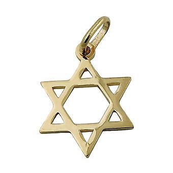 Pendants star of David gold 375 pendant, star of David, 9 KT GOLD