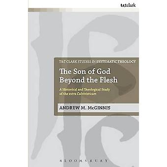 Der Sohn des Gottes über das Fleisch von McGinnis & Andrew M.