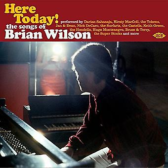 Here Today Songs of Brian Wilson - Here Today Songs of Brian Wilson [CD] USA import