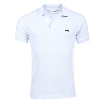 Short sleeves polo Sky blue PH4012 Lacoste Man