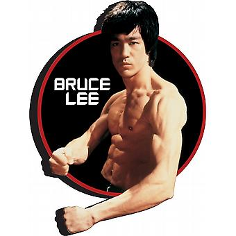 Bruce Lee chunky thick fridge magnet    (nm)