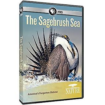 Nature: The Sagebrush Sea [DVD] USA import