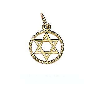 9ct Gold 12mm plain Star of David in a twisted wire circle Pendant