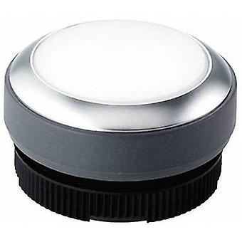 Pushbutton planar White RAFI RAFIX 22 FS+ 1.30.270.031/2200 1 pc(s)