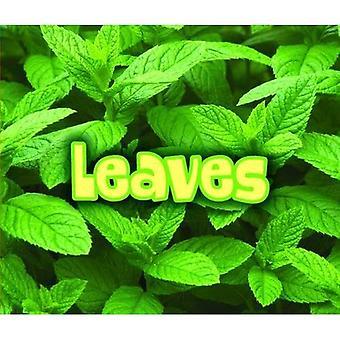 Kyse lehdet (kaikki kasvit)