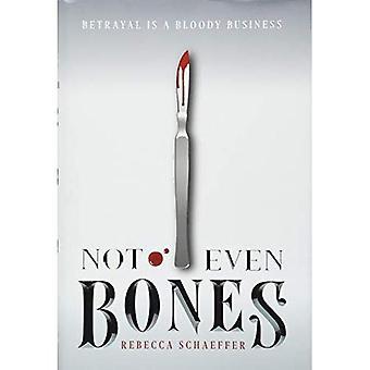 Nem mesmo ossos (mercado de monstros)