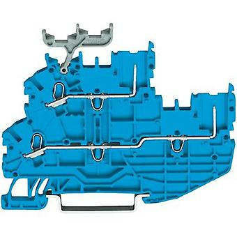 Base terminal 3.50 mm Pull spring Configuration: N Blue WAGO 2020-2204 1 pc(s)