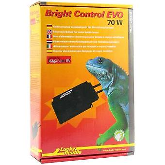 Lucky Reptile Bright Control 70W Evo (Reptiles , Lighting , Lamps)