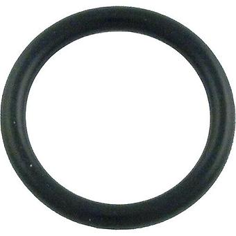 Pentair 273090 O-Ring for 2