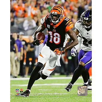 AJ Green 2018 Action Photo Print