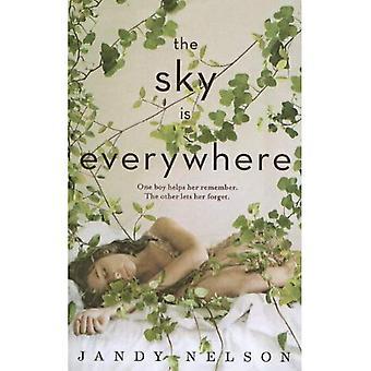 El cielo está en todas partes