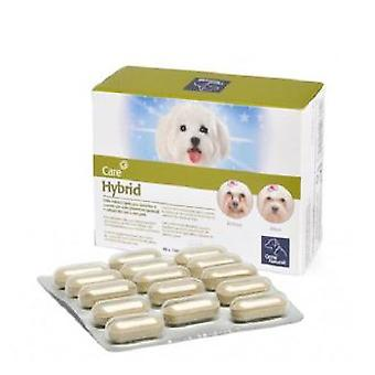 Camon Hybrid (Dogs , Supplements)