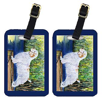 Carolines Treasures  SS8261BT Pair of 2 Clumber Spaniel Luggage Tags