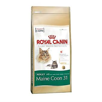 Royal Canin felino Maine Coon gatto secco cibo Mix 4kg