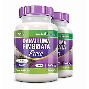 Caralluma Pure Caralluma Fimbriata 500mg - 120 Capsules - Appetite Control - Evolution Slimming