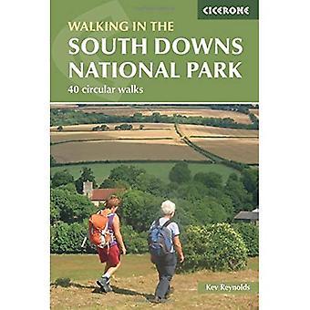 Wandelingen in het Nationaal Park South Downs