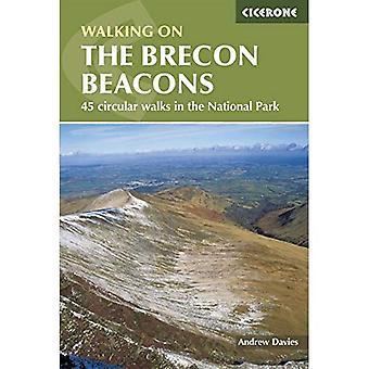 The Brecon Beacons: A Walkers' Interpretation Guide