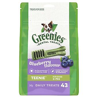 Greenies Teenies BLUEBERRY Pack 340gm