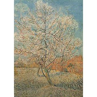 Peach Tree in Blossom, Vincent Van Gogh, 80.5 x 59.5 cm