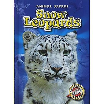 Snow Leopards (Animal Safari)