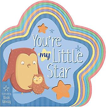 You're My Little Star [Board book]