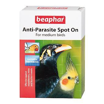 Beaphar anti-parasit plats på för medelstora fåglar 4 veckors behandling