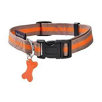 Bobby Collar Nylon Arlequin (Dogs , Collars, Leads and Harnesses , Collars)