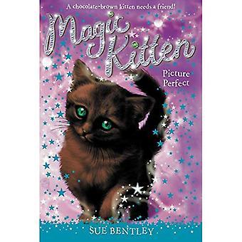 Bild perfekt (magiska kattunge)
