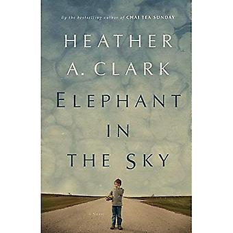 Elephant in the Sky : A Novel