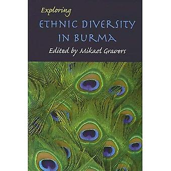 Exploring Ethnic Diversity in Burma (Nias Studies in Asian Topics)