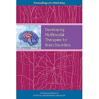 Utvikle flere terapier for hjernen lidelser: Proceedings av en Workshop
