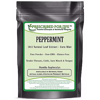 Peppermint - 10:1 Natural Leaf Extract Powder (Mentha haplocalyx)