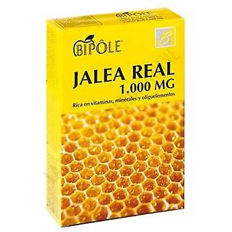 Intersa Bipolaire Gelée Royale 1000 mg. (20 flacons)