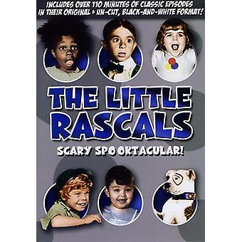 Lille slyngler - skræmmende Spooktacular [DVD] USA importerer