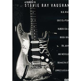 Tribute to Stevie Ray Vaughan - Tribute to Stevie Ray Vaughan [DVD] USA import