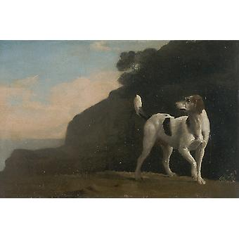George Stubbs - Foxhound by the right Poster Print Giclee