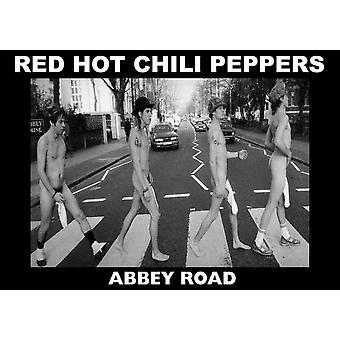 Red Hot Chili Peppers Abbey Rd Abbey Road Poster Poster Print