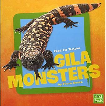 Få at vide Gila monstre (få at vide krybdyr)