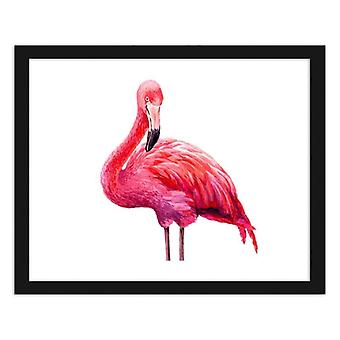 Picture In Black Frame, Realistic Illustration Of A Pink Flamingo