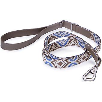 Loved Ones Fashion Dog Leash 4'-Blue 85015