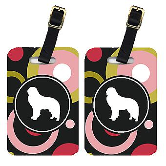 Carolines Treasures  KJ1138BT Pair of 2 Kuvasz Luggage Tags
