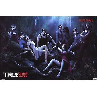 True Blood - Cast Poster Poster Print