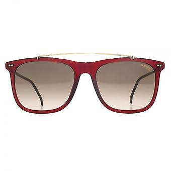 Carrera 150 Sunglasses In Burgundy