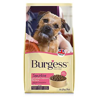 Burgess Sensitive Adult Dog Salmon & Rice 12.5kg