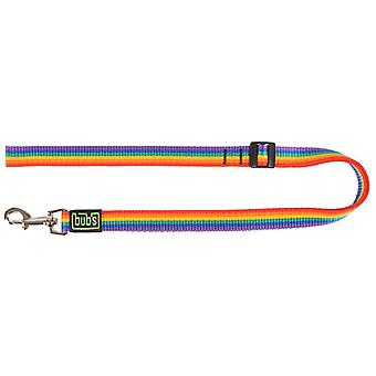 Bub's Correa Extensible Rainbow (Dogs , Collars, Leads and Harnesses , Leads)