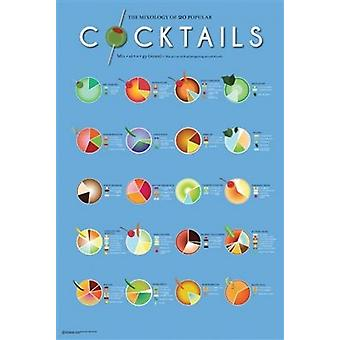 Cocktails - Mixology Poster Poster Print