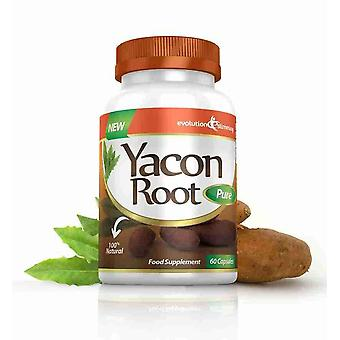 Yacon Root Pure 500mg - 180 Capsules - Fat Burner and Appetite Control - Evolution Slimming